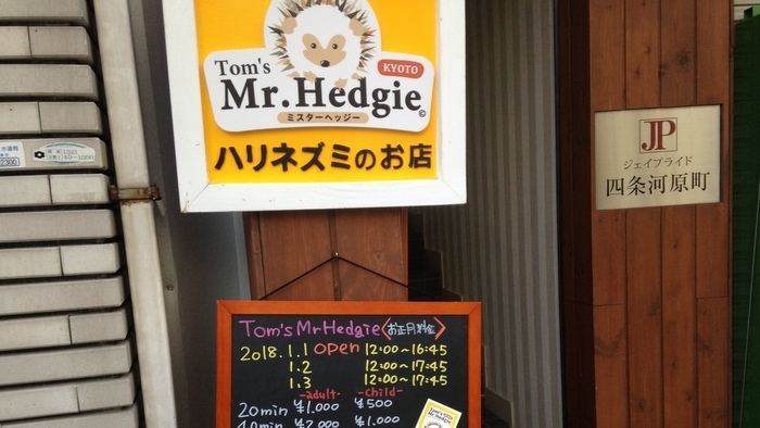 Tom's Mr.Hedgie
